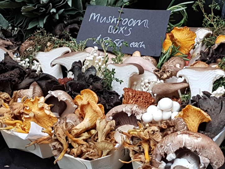 Mushroom boxes borough market